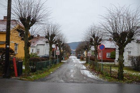 HJELP: Veilederen vil være en litt slik hvem, hva, hvor for dem som vil renovere hus og uteområde i Grønbyen.