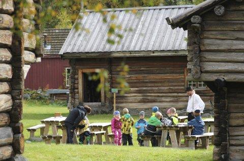 UNDERVISNING: Gjennom Den kulturelle skolesekken får elever i Hjartdal årlig besøke og oppleve sitt lokale bygdetun. – Dette skaper forståelse og bygger identitet, mener museumspedagog Målfrid Ravnåsen Vangen.