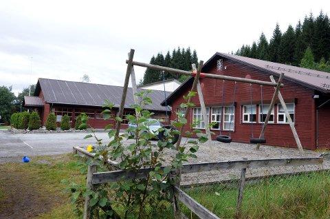 Ansatte ved Meisingset Oppvekstsenter frykter for konsekvensene når Tingvoll kutter i skolebudsjettet. (Arkivfoto)