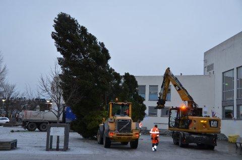 I år er det ikke plass til noe juletre på torget i Steinkjer. Arkivbilde fra 2018.