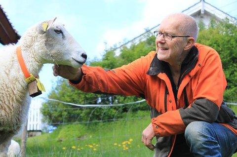 Jakob Einar Olimstad, som er leder i Holt og Vegårshei bondelag, har sauer på gården hjemme på Vegårshei. Privat foto