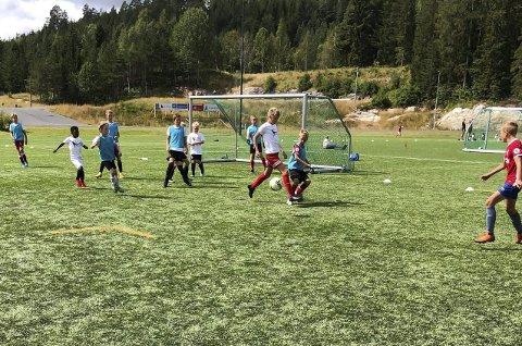 Vegårshei: Fra mandag til torsdag denne uken har 44 unge i alderen 8 til 13 år vært på fotballskole på Vegårshei. Foto:Privat