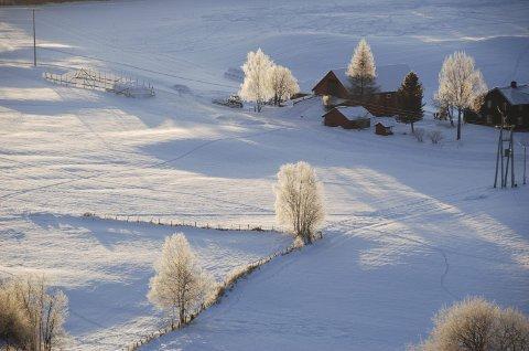 Kaldt og klårt: Nydeleg vinterstemning sør i Øystre Slidre 30. november.