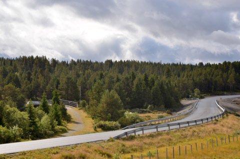 Paret ble funnet omkommet rett ved Vasetdansen Camping. Her er Ormhamar bru over Tisleia og rasteplassen ligger inne i skogen til venstre på bildet.
