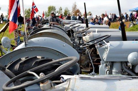 Bildet er frå 70-årsjubileet til Sælshagane Gråtassforening i 2012.