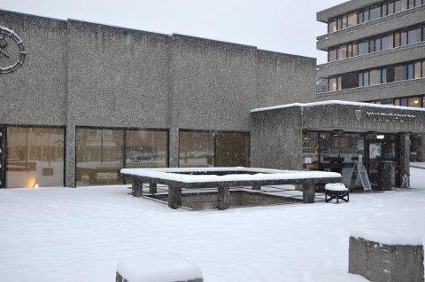 Fylles av fugle: Søndag blir det smittevernvennlig «fuglefest» for store og små i kulturhuset på Fagernes.