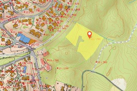 SELGES:Kart som viser gårdsnummer 15, bruksnummer 790 merket med gult.