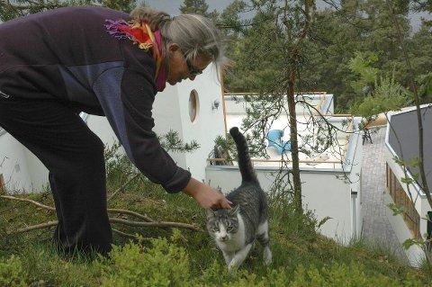 Passer på: Kari Rolland driver «Nesoddkatten», en facebookside der folk kan legge ut og finne tilbake til bortkomne katter. Om sommeren er det mange katter som må klare seg selv mens eierne er på ferie. Her er Rolland med katten Mons. Foto: Privat