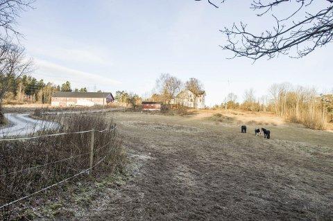 Fuglesang gård: I dag er det liten aktivitet ved Fuglesang gård.Begge Foto: Ole chr. Eklund