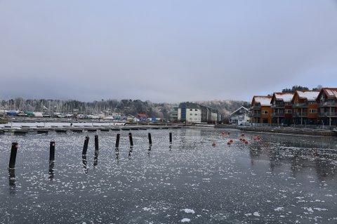 Det har vært uvanlig kaldt i januar. Kulda vil fortsette også i februar.
