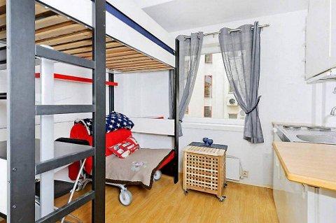 Huseiernes Landsforund oppfordrer alle huseiere med rom til overs om å leie ut til studenter.