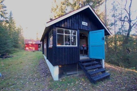 KAN BLI TRUKKET: Eieren av denne vesle hytta i Vestmarka, nær Grønlandsveien, vurderer å trekke stedet fra markedet da det ikke er kommet inn bud over 800.000 kroner. FOTO: OLAV FØLLESDAL SANDVIKA ADVOKATKONTOR