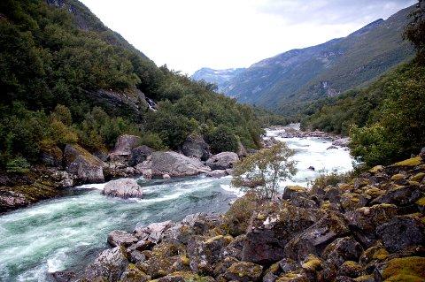 Fylkesmannen har ikke penger til å støtte fisketiltak i Driva.