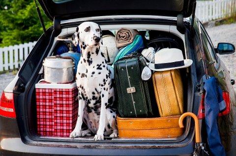 Vær bevisst på hvordan du pakker når du skal på langtur med bilen. Feil plassering av bagasje og gjenstander i bilen kan være livsfarlig. (Foto: Erlend Aas, NTB scanpix/ANB)