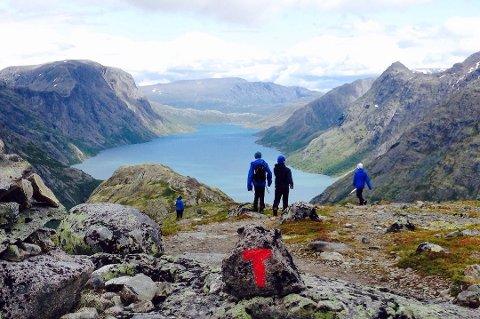 37 prosent av Norges befolkning har tenkt seg til fjells i sommer. Her fra Jotunheimen. Foto: DNT/ANB