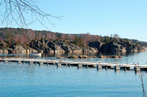 Fylkesmannen anbefaler at Miljødirektoratet  pålegger kommunen å fjerne småbåthavna