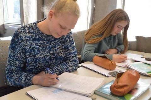 EFFEKTIV JOBBING: - Stina Nes Sjursen (15) til venstre jobbar godt saman med Trude Austrheim (15) med realfaga.