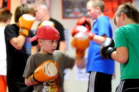 Dette bilde er fra  Bodø Bokseklubbs bokseskole høsten 2010. Klubben er innstilt på å få støtte fra kommunen til å arrangerer ny bokseskole.