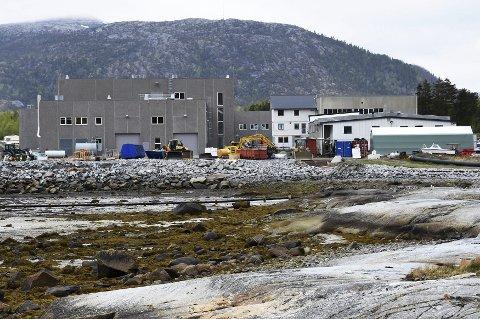 Ressurs: – Smolten AS på Innhavet i Hamarøy vil gjennom et teknologiutviklingsprosjekt forsøke å omgjøre slam fra produksjonen til økologisk gjødsel. Foto: Øyvind A. Olsen