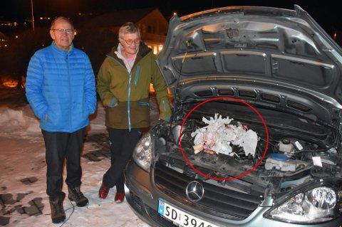 BOL: Hos ekteparet Kjell Pettersen og Reidun Bastholm i Røsholtveien 13 B i Bodø har rotter gjort skade for flere tusen kroner. Nå ber de kommunen om hjelp.