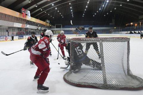 Bergen Ishockeyklubb har i all hovedsak fokusert på yngre lag og en seniorsatsing med økonomisk kontroll de siste årene. Nå topper de 2. divisjon, og i mars venter kvalifisering om opprykk til 1. divisjon.