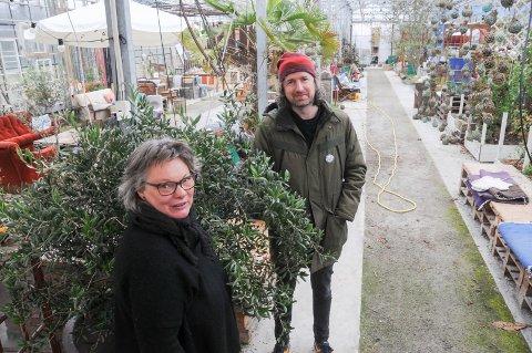 Lanserer ny festival: Gründer Elin Rydningen og programansvarlig Geir Bø er blant dem som nå planlegger en ny festival på Rennesøy, i et drivhus på Helland, våren 2022.