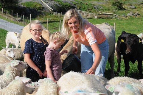 Foring: Aud Jorunn og døtrene Selma (t.v.) og Ida gir kraftfor til sauer og kyr på beite. - Det er nesten som å gi dem lørdagsgodt, sier hun.