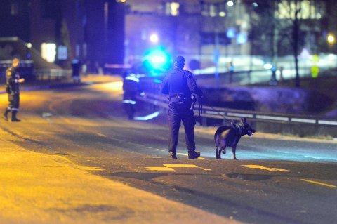 FUNNSTEDET: Mannen ble funnet ved bruenden over Vestfosselva ved Loe Bruk i Hokksund.