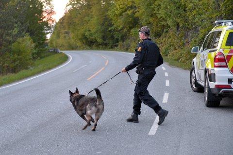 Politiet leter mandag kveld etter en navngitt person med hunder.