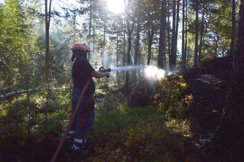 Arkivbilde: Sommeren 2014 var det skogbrann i Ytre. Da var lynnedslag som deretter hadde ulmet trolig årsaken.