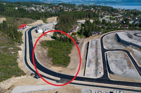 Høgåsen Tomteutvikling AS trenger å erverve deler av eiendommen som her er ringet inn. Nå vil rådmannen hjelpe til ved å ekspropriere arealet.