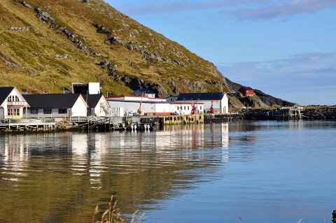 14 ARBEIDERE MANGLER: Fiskebruket som eies og drives av Johan B. Larsen fisk AS har 14 arbeidere mindre etter uenigheter mellom arbeiderne og ledelsen.