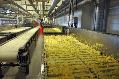 FREMTIG FUSJON: North Capelin Honningsvåg vil i fremtiden bli en mange fiskefabrikker i Pelagia-konsernet.