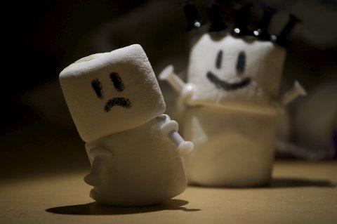 Marshmallows: Godteri skal etast, ikkje testast. FOTO: Maryam Abdulghaffar (CC BY-2.0)
