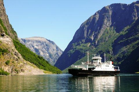 Dei ikoniske vestlandsfjordane er mest sannsynleg å finne i fleire av dei 340 innsende forslaga til fylkesvåpen som har natur som tema.