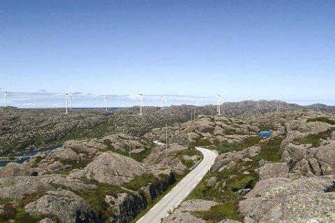 Sula Kraft AS innser at det vert vanskeleg å gå imot folkets vilje, og trekkjer dermed konsesjonssøknaden for Ytre Sula vindkraftverk.