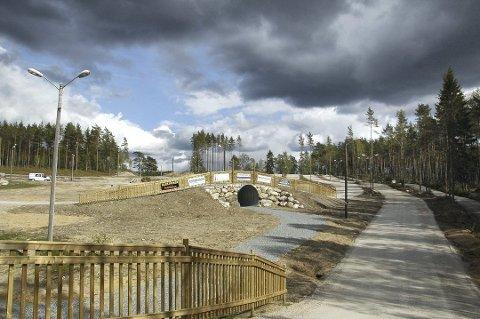 I sin kronikk om skiklubbens planer nevnte Per Stenseth, formann i skiklubben, Tistedalen friluftslags anlegg på Ertemoen som eksempel på de nye helårsanlegg som nå utvikles.