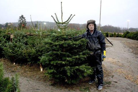 15 år i treets tjeneste: Hver eneste desember kommer Steinar Skaar fra Bergen til Fredrikstad for å selge juletrær.