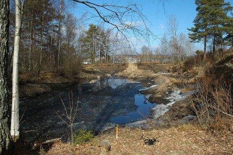 SKAL REHABILITERES: Det er flere år siden Bjølstaddammen på Kråkerøy ble tappet ned etter lekkasjer. Nå skal endelig løsningen som sikrer storsalamanderens kår i dammen på plass.