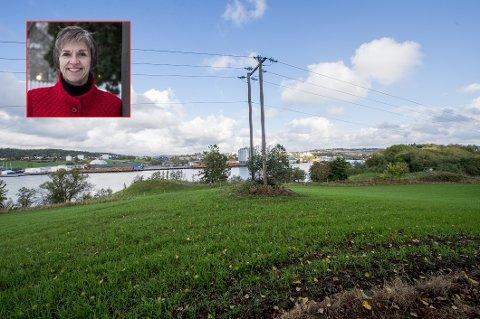 Tina Bergstrøm (Ap) kom ikke på før like etter planutvalgets møte at hun nok var inhabil da utvalget behandlet søknaden fra Borg Havn om en gjestebrygge nedenfor dette området på Roald Amundsens fødested. Dermed må utvalget møtes på nytt.