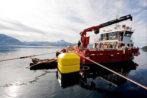 Dieseldrevne båter i oppdrettsnæringen kan bli erstattet med elektriske. Det kan spare miljøet for store utslipp. (Illustrasjonsfoto)