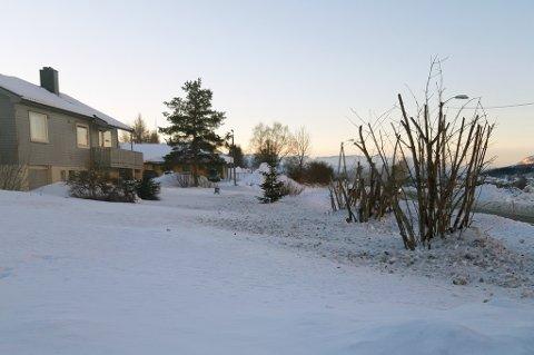 Gerd Marit Gabrielsen i Bjerkvik våknet torsdag morgen av at brøytebilen fylte hagen med snø, stein, salt og brøytestikker. Hus langs hele Nordmoveien i Bjervik ble rammet. Entreprenøren beklager, og lover at det ikke skal skje igjen.