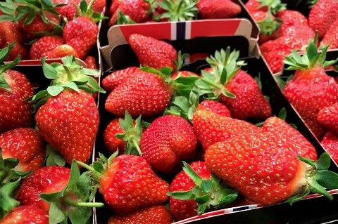 SMAKEN AV SOMMER: Noen dager tidligere enn i fjor er norske jordbær nå i butikkene. Disse, fra Moskvil gård, er av sorten Flair. Koronabær blir det ikke fra Nykirke - i år, heller.