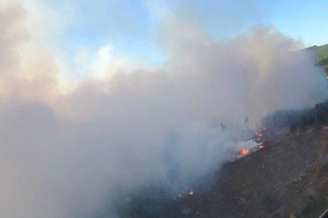 SVERIGE: Det brenner en større skogbrann ved Hagfors i Sverige.