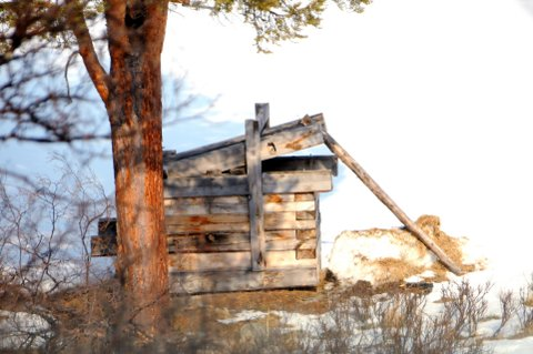 KAN OVERVÅKE: Jerv-jegere i Oppland kan få elektronisk overvåking av jervebåser, selv om det så mørkt ut tidligere i sommer.