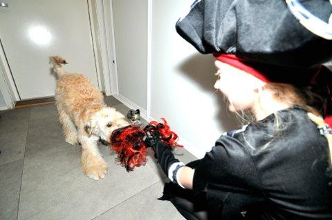 DEN ER MIN!: Firbeinte Penny (1/2) og tobeinte Mina (12) diskuterer om hvem som skal ha på parykken på Halloween.