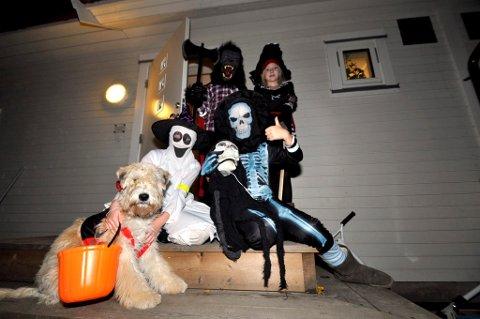 Søsknene Ingrid (9) og Magnus Rusten Dalheim (11) og Louise (9) og Mina (12) Lie Tømmerberg og den skumle hunden Penny (1/2) forbereder seg til Halloween.