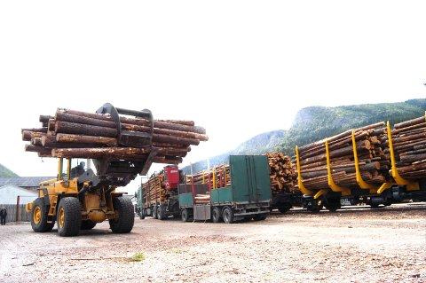 Skogsvirke til ny byggeindustri - grunnlag for nye sastsinger i innlandsregionen.