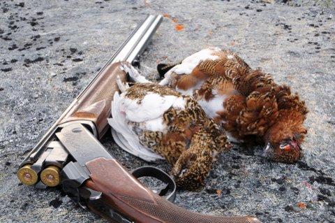 -  I Norge er 2355 arter klassifisert som truet. Samtidig kjøper jegere seg til retten til å drepe rødlista dyr for moro skyld, skriver Jenny Rolness.