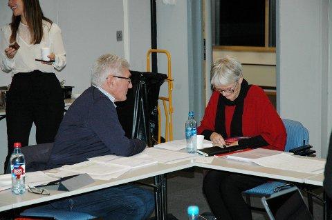 NYUTVIKLER: Styreleder Anne Enger og nestleder Tor Berge vil invitere Helse Sør-Øst til å utvikle en mer desentralisert organisering av framtidas helsetjenester.